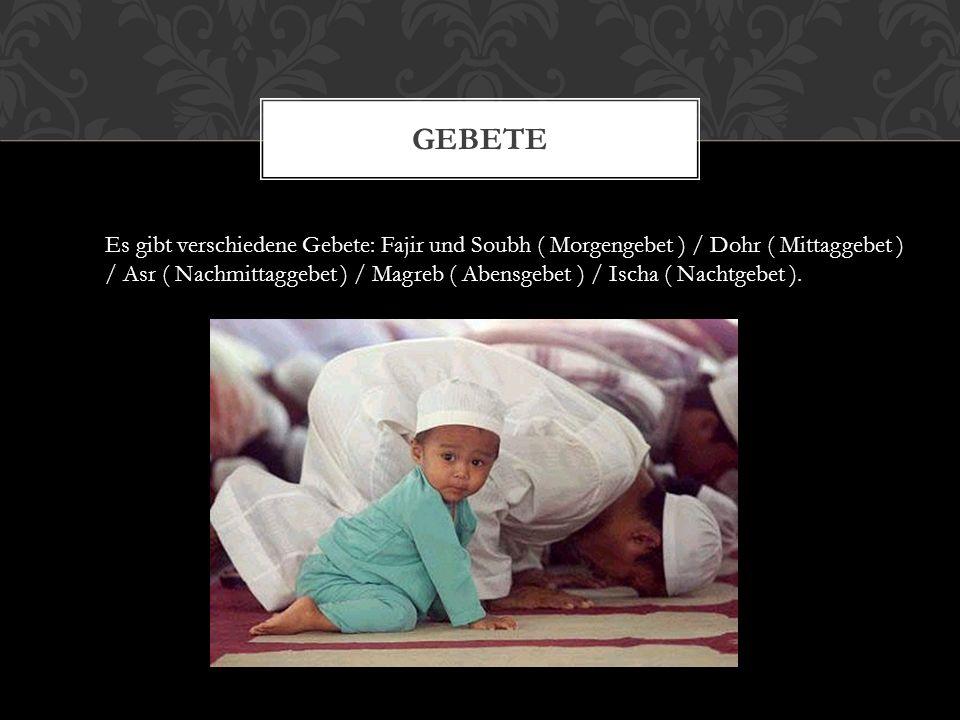 RITUALE Beim muslimischen Pflichtgebet zum Beispiel spricht man das Gebet und macht dazu verschiedene Bewegungen.