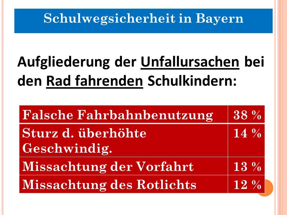Aufgliederung der Unfallursachen bei den Rad fahrenden Schulkindern: Falsche Fahrbahnbenutzung38 % Sturz d.