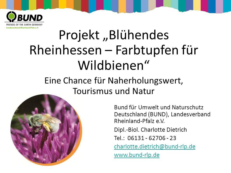 Bund für Umwelt und Naturschutz Deutschland (BUND), Landesverband Rheinland-Pfalz e.V. Dipl.-Biol. Charlotte Dietrich Tel.: 06131 - 62706 - 23 charlot