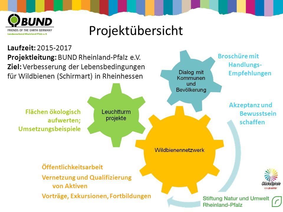 Öffentlichkeitsarbeit Vernetzung und Qualifizierung von Aktiven Vorträge, Exkursionen, Fortbildungen Projektübersicht Laufzeit: 2015-2017 Projektleitu