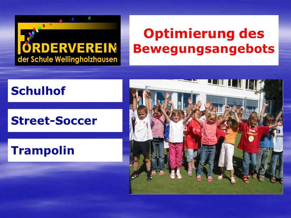 Optimierung des Bewegungsangebots Schulhof Street-Soccer Trampolin