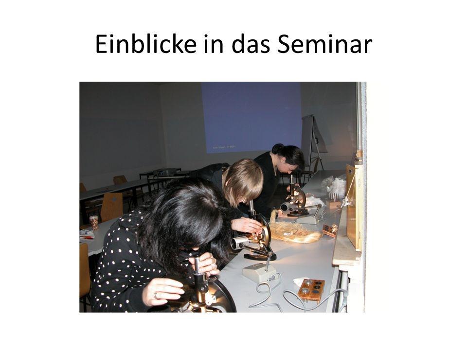 Einblicke in das Seminar