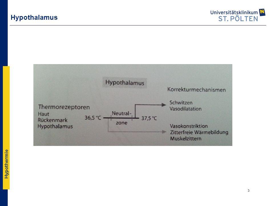 Hypothermie Hypothalamus 3