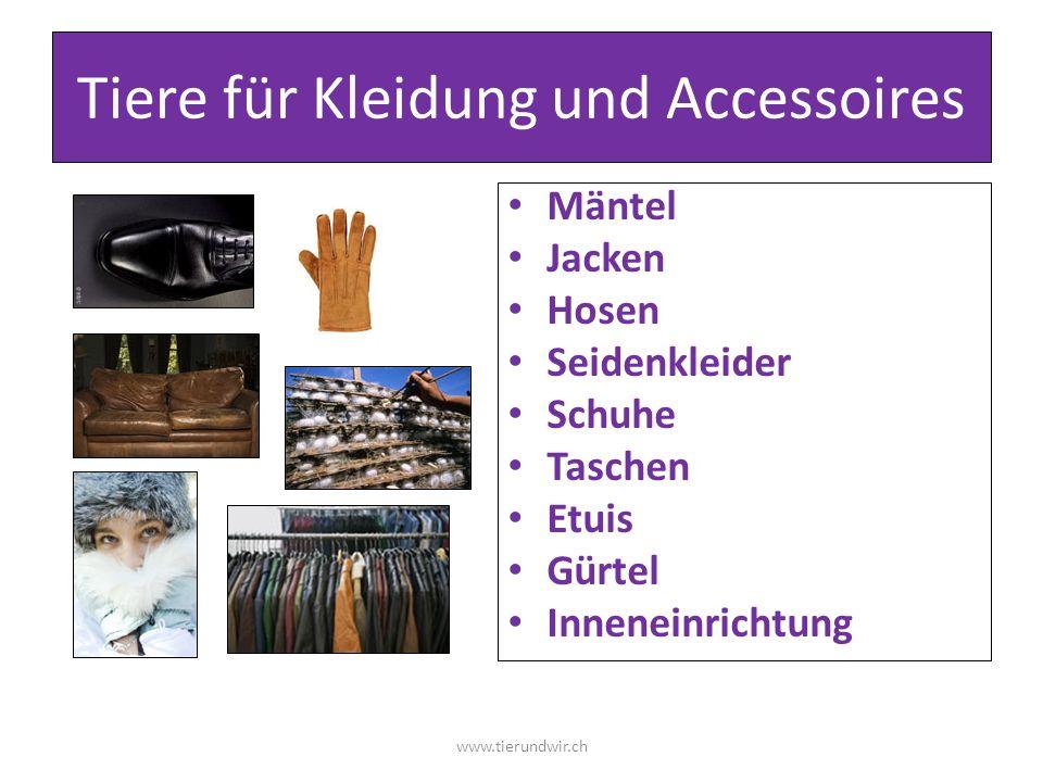 Tiere für Kleidung und Accessoires Mäntel Jacken Hosen Seidenkleider Schuhe Taschen Etuis Gürtel Inneneinrichtung www.tierundwir.ch