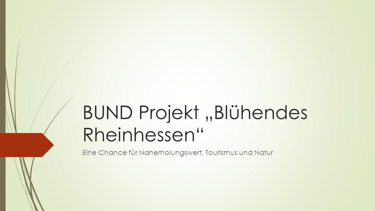 """BUND Projekt """"Blühendes Rheinhessen Eine Chance für Naherholungswert, Tourismus und Natur"""