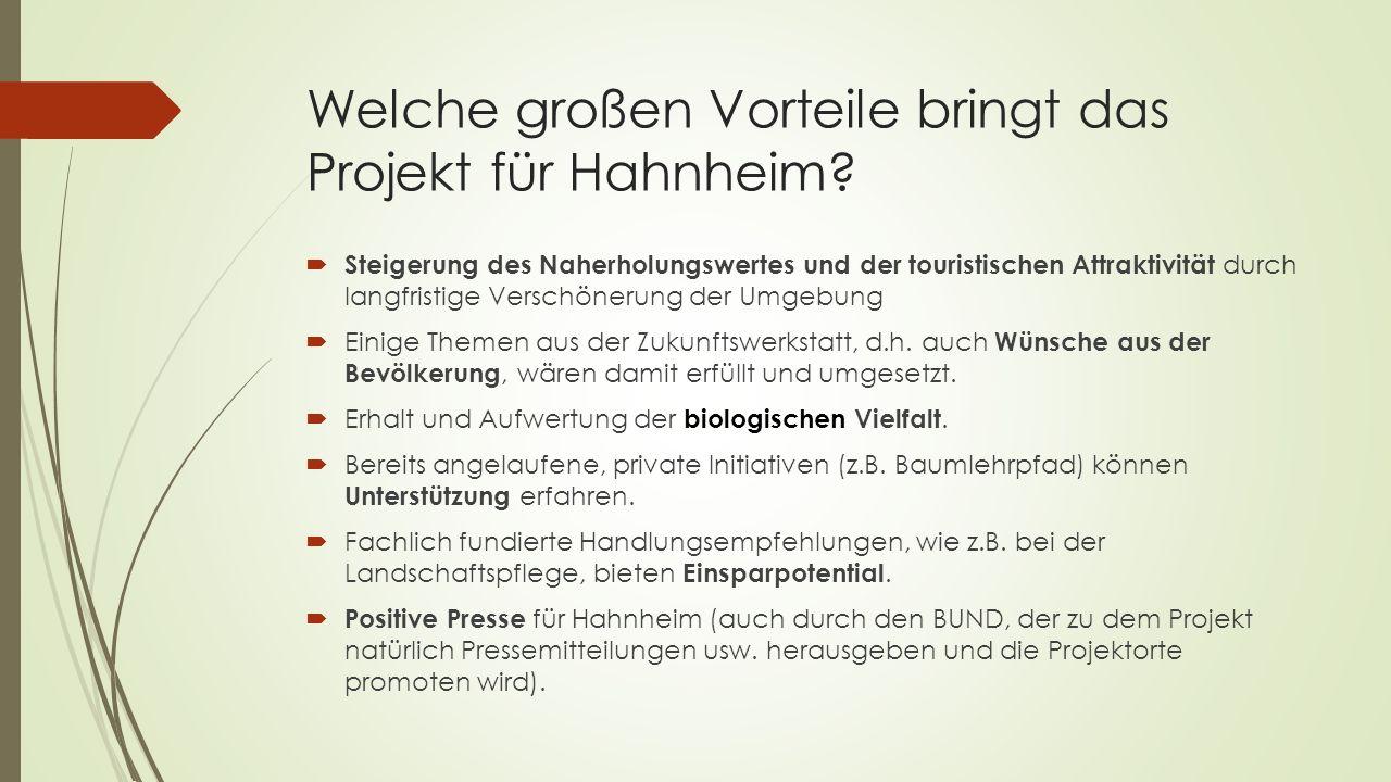 Welche großen Vorteile bringt das Projekt für Hahnheim.