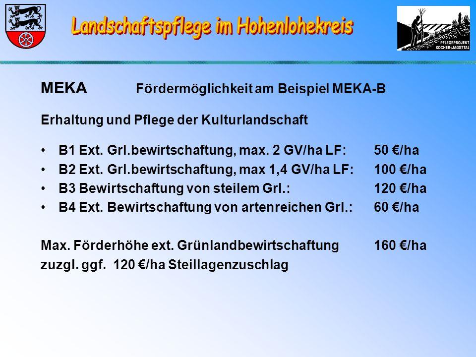 MEKA Fördermöglichkeit am Beispiel MEKA-B Erhaltung und Pflege der Kulturlandschaft B1 Ext.