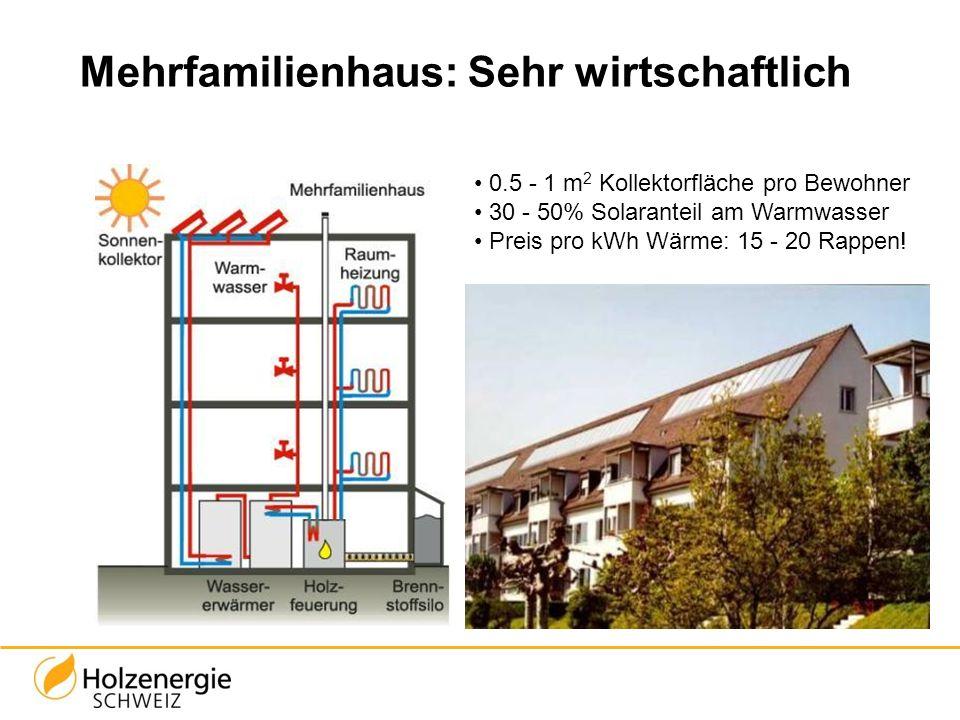 Mehrfamilienhaus: Sehr wirtschaftlich 0.5 - 1 m 2 Kollektorfläche pro Bewohner 30 - 50% Solaranteil am Warmwasser Preis pro kWh Wärme: 15 - 20 Rappen!