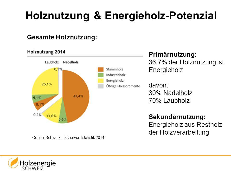 Primärnutzung: 36,7% der Holznutzung ist Energieholz davon: 30% Nadelholz 70% Laubholz Sekundärnutzung: Energieholz aus Restholz der Holzverarbeitung