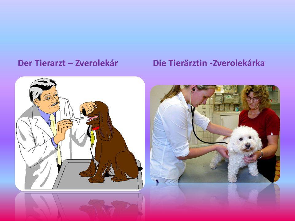 Der Tierarzt – ZverolekárDie Tierärztin -Zverolekárka