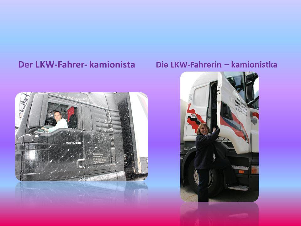Der LKW-Fahrer- kamionista Die LKW-Fahrerin – kamionistka