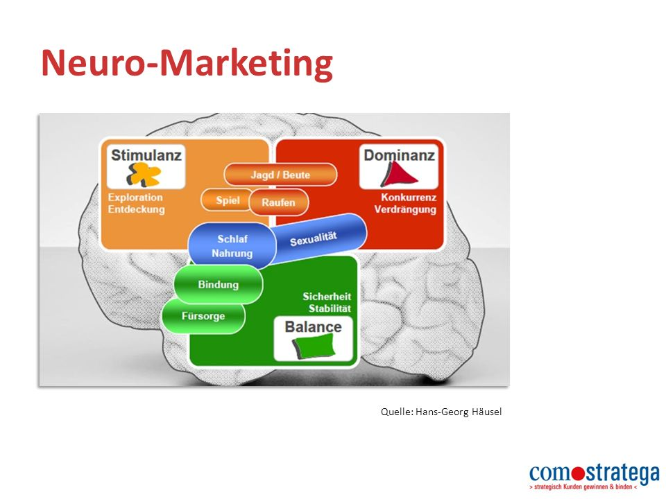 Neuro-Marketing Quelle: Hans-Georg Häusel