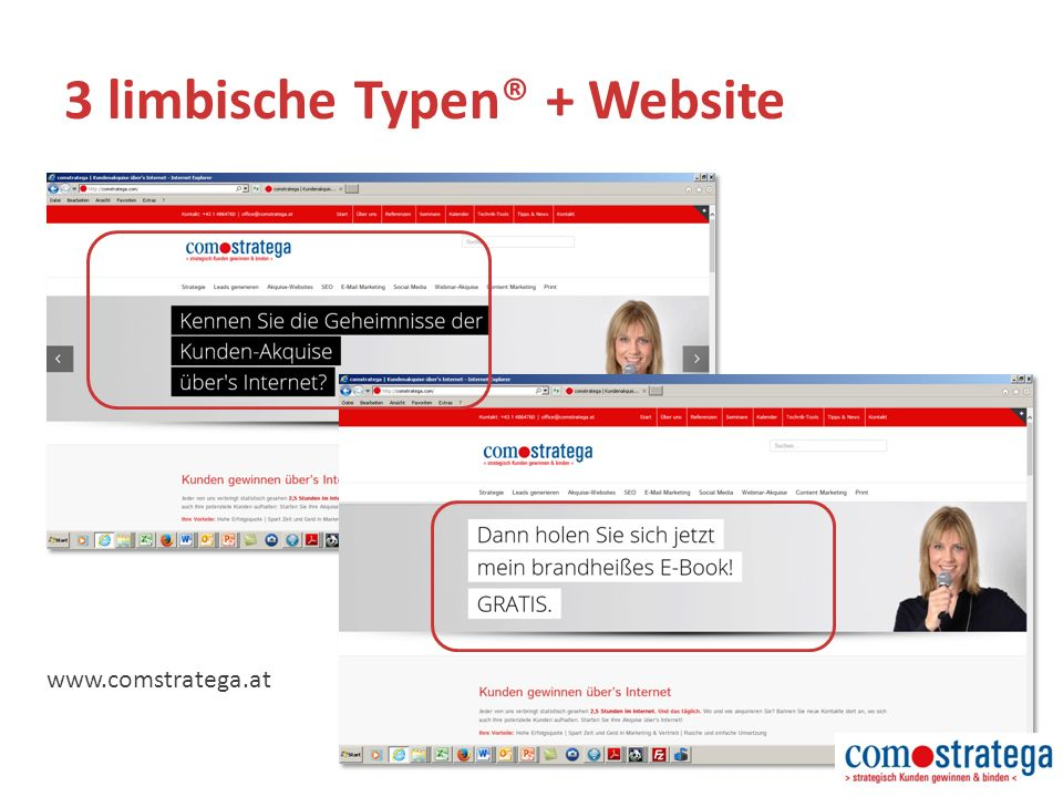 www.comstratega.at 3 limbische Typen® + Website