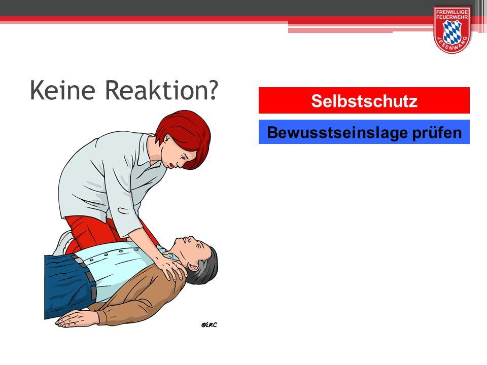 2 Beatmungen Dauer je 1 Sekunde Einblasen bis sich der Brustkorb hebt.