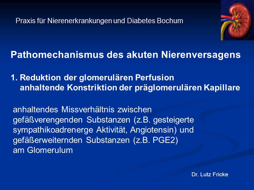 Praxis für Nierenerkrankungen und Diabetes Bochum Dr. Lutz Fricke Pathomechanismus des akuten Nierenversagens 1. Reduktion der glomerulären Perfusion