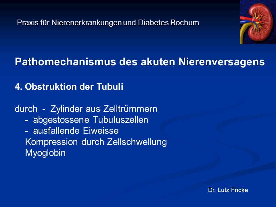 Praxis für Nierenerkrankungen und Diabetes Bochum Dr. Lutz Fricke Pathomechanismus des akuten Nierenversagens 4. Obstruktion der Tubuli durch- Zylinde