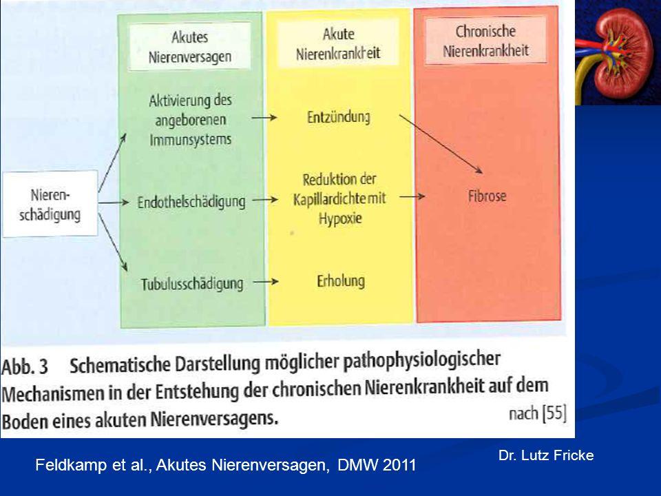 Praxis für Nierenerkrankungen und Diabetes Bochum Dr. Lutz Fricke Feldkamp et al., Akutes Nierenversagen, DMW 2011