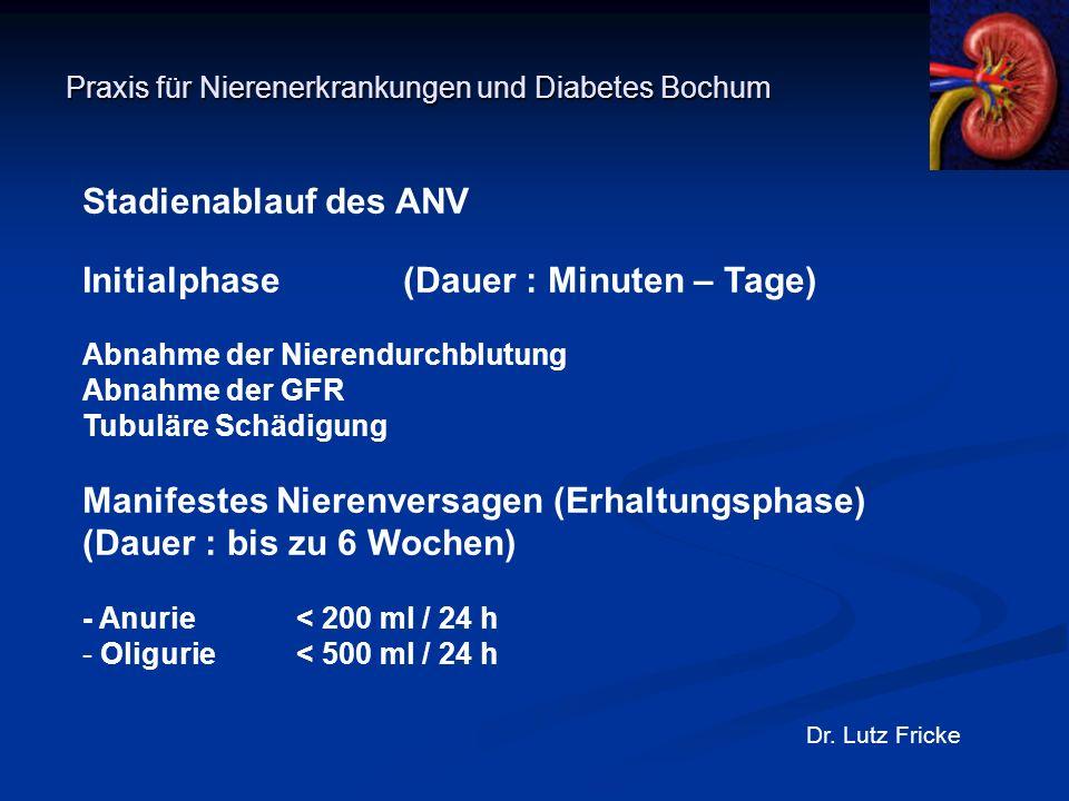 Praxis für Nierenerkrankungen und Diabetes Bochum Dr. Lutz Fricke Stadienablauf des ANV Initialphase(Dauer : Minuten – Tage) Abnahme der Nierendurchbl