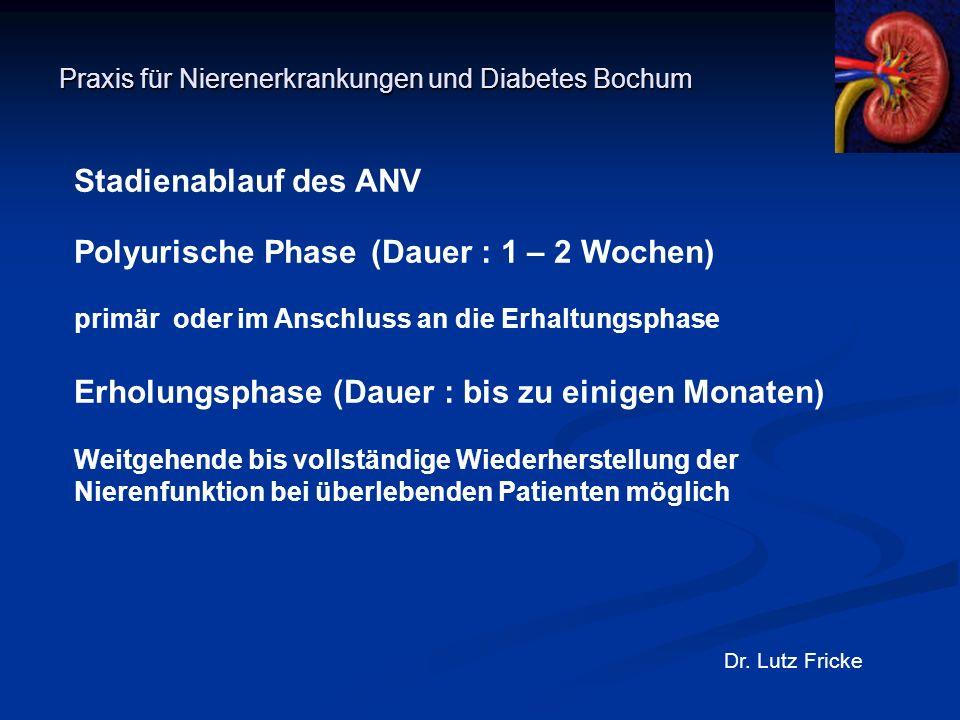 Praxis für Nierenerkrankungen und Diabetes Bochum Dr. Lutz Fricke Stadienablauf des ANV Polyurische Phase (Dauer : 1 – 2 Wochen) primär oder im Anschl