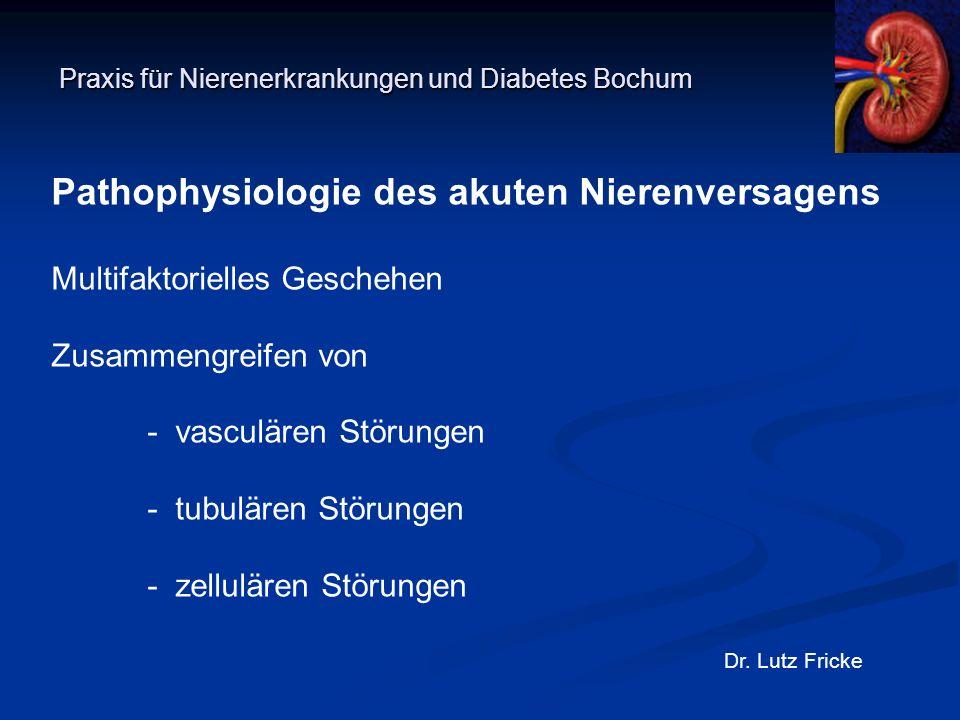Praxis für Nierenerkrankungen und Diabetes Bochum Dr. Lutz Fricke Pathophysiologie des akuten Nierenversagens Multifaktorielles Geschehen Zusammengrei