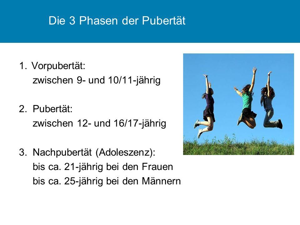 Die 3 Phasen der Pubertät 1.Vorpubertät: zwischen 9- und 10/11-jährig 2.