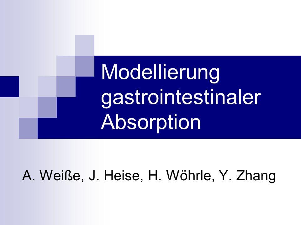 Vergleich der Modellannahmen CATGITAAGITAACAT segmentweise Absorptionrate  segmentweise Transportrate  Absorption nicht nur im DD  Auflösung des Medikaments  Ausfällung des Medikaments  Zerfall des Medikaments  physikochem.