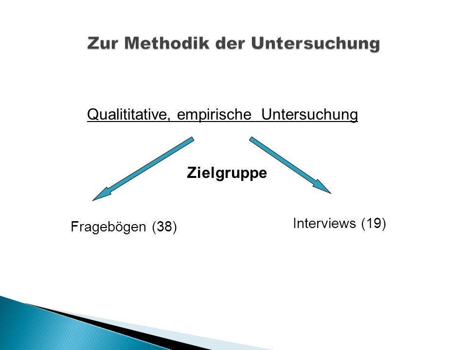 Fragebögen (38) Interviews (19) Qualititative, empirische Untersuchung Zielgruppe