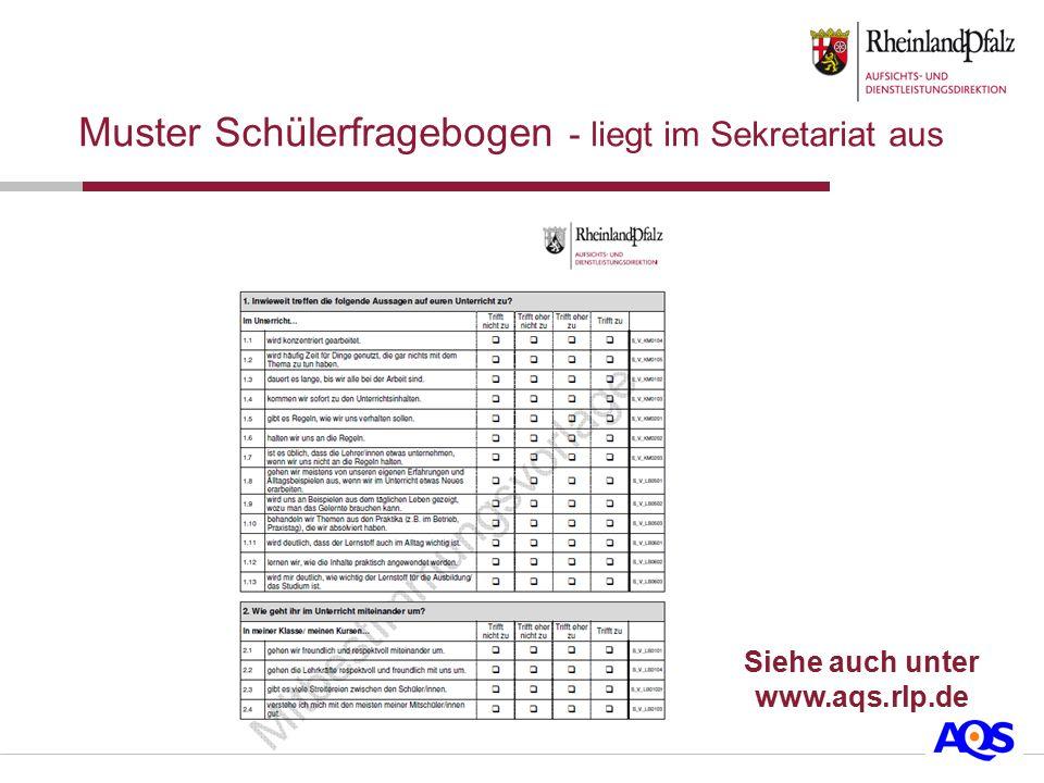 Muster Schülerfragebogen - liegt im Sekretariat aus Siehe auch unter www.aqs.rlp.de