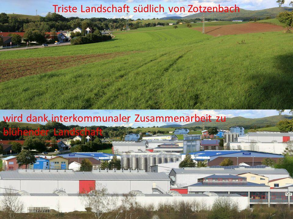 Triste Landschaft südlich von Zotzenbach wird dank interkommunaler Zusammenarbeit zu blühender Landschaft