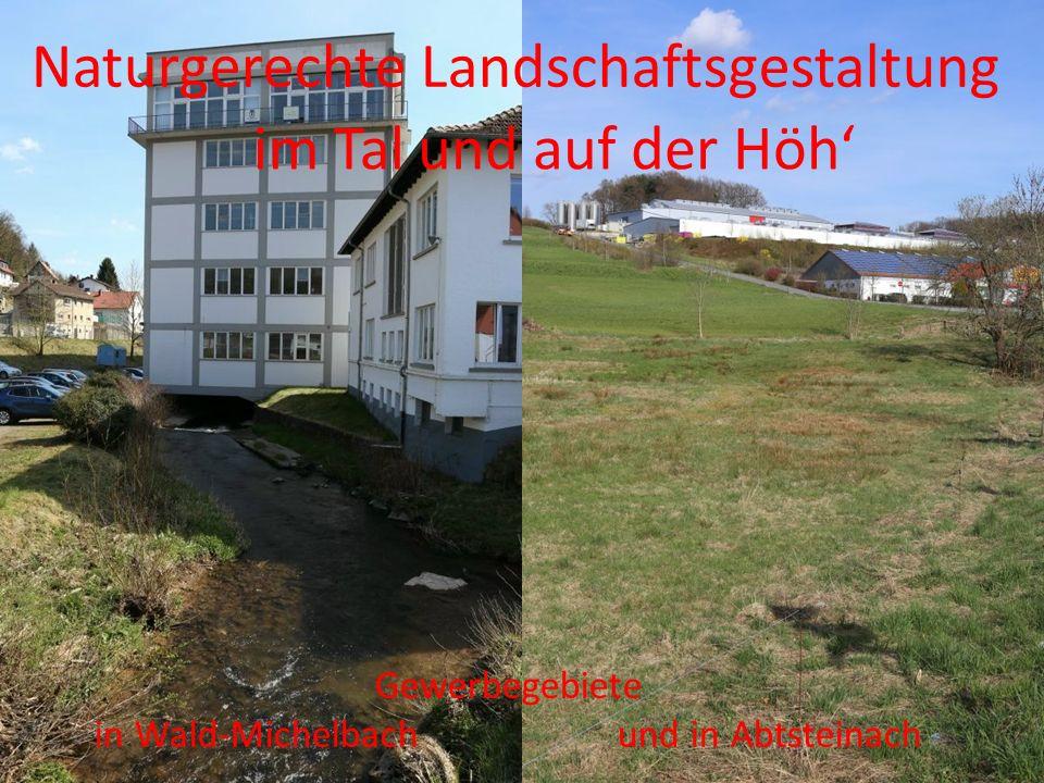 im Talund auf der Höh' Naturgerechte Landschaftsgestaltung Gewerbegebiete in Wald-Michelbach und in Abtsteinach