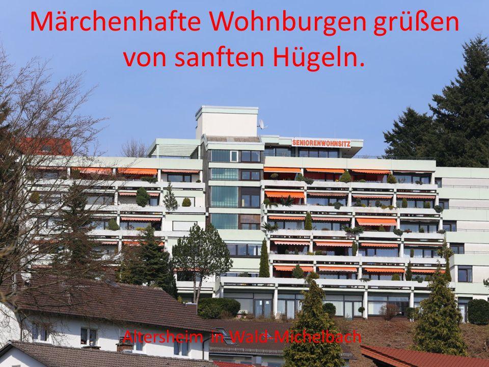 Der Mörlenbach in Mörlenbach Der Waldbach in Rimbach Bäche, die im Nichts verschwinden…..