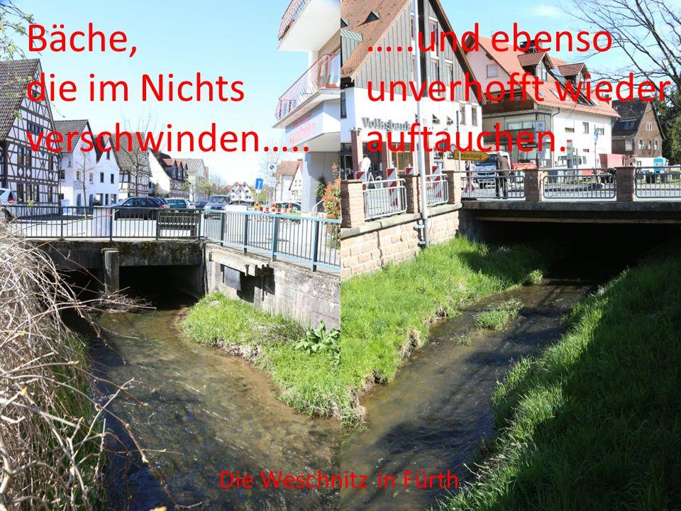 Der Mörlenbach in Mörlenbach Der Waldbach in Rimbach Bäche, die im Nichts verschwinden….. …..und ebenso unverhofft wieder auftauchen. Die Weschnitz in