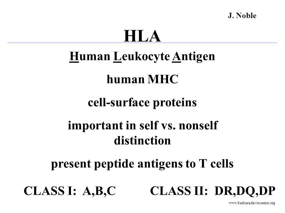 TERMINOLOGY DRB1*02 DQB1*0302DRB1*0401 DRB1*0301 DQB1*0302 DRB1*0401 DQB1*02 Allele: Haplotype: Genotype J.