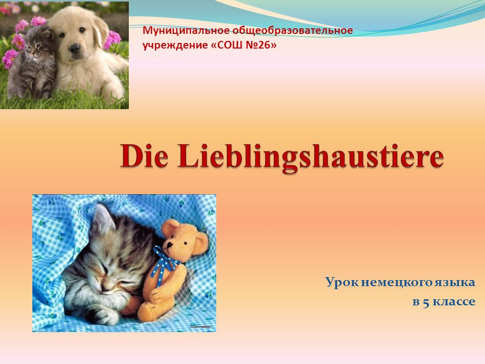Урок немецкого языка в 5 классе Муниципальное общеобразовательное учреждение «СОШ №26»