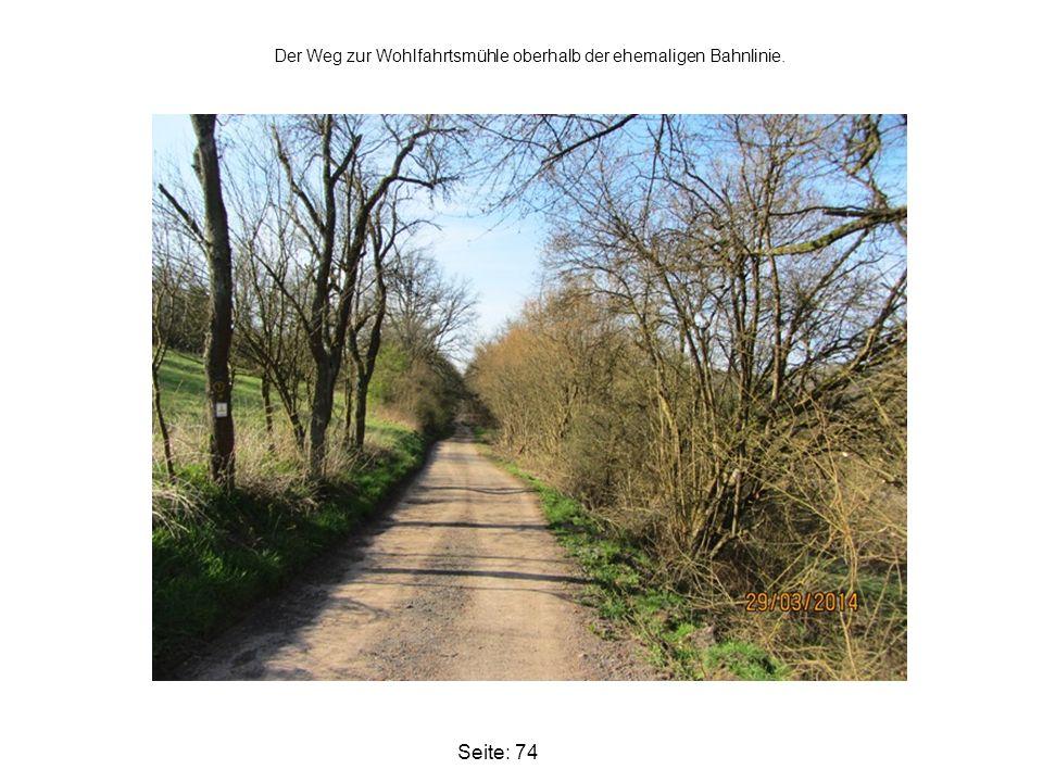 Seite: 74 Der Weg zur Wohlfahrtsmühle oberhalb der ehemaligen Bahnlinie.