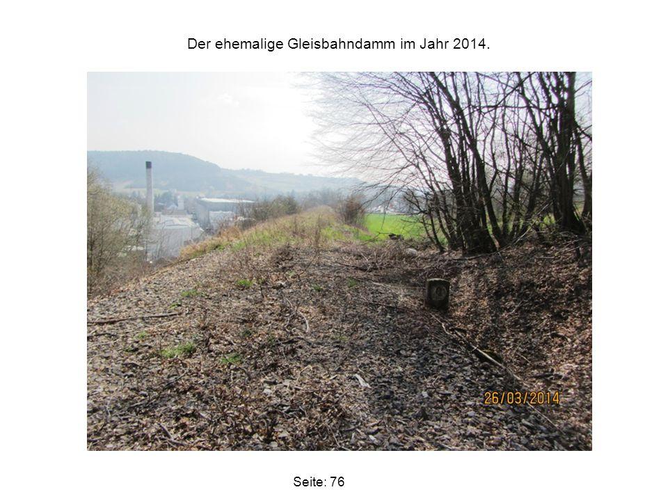 Der ehemalige Gleisbahndamm im Jahr 2014. Seite: 76