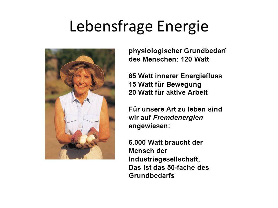 Lebensfrage Energie physiologischer Grundbedarf des Menschen: 120 Watt 85 Watt innerer Energiefluss 15 Watt für Bewegung 20 Watt für aktive Arbeit Für