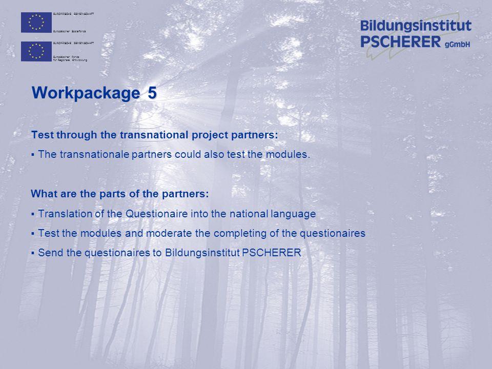 EUROPÄISCHE GEMEINSCHAFT Europäischer Sozialfonds EUROPÄISCHE GEMEINSCHAFT Europäischer Fonds für Regionale Entwicklung Workpackage 5 Test through the transnational project partners:  The transnationale partners could also test the modules.