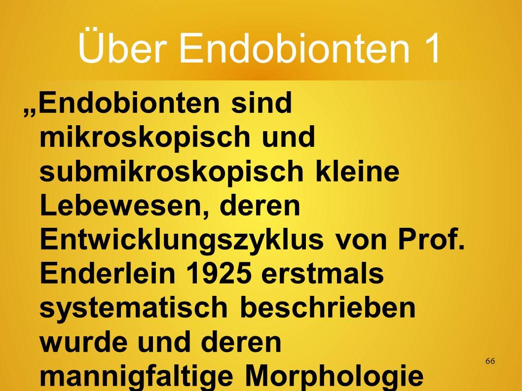 """65 Entwicklungs-Zyklen......von Endobionten (Ur-Mikroorganismen im Blut): Hier als Beispiel beim """"Aspergillus niger (in der Abbildung oben links), ein Schimmelpilz."""