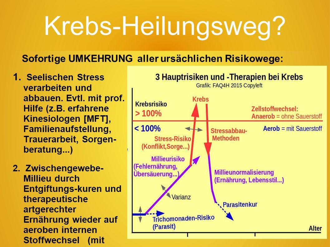 74 Krebs-Hauptrisiken. 1.