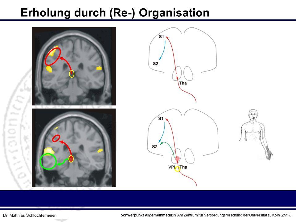 Schwerpunkt Allgemeinmedizin Am Zentrum für Versorgungsforschung der Universität zu Köln (ZVfK) © Prof. Dr. J.W. Robertz Erholung durch (Re-) Organisa