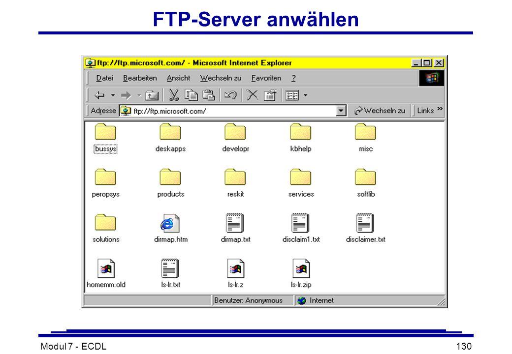 Modul 7 - ECDL130 FTP-Server anwählen