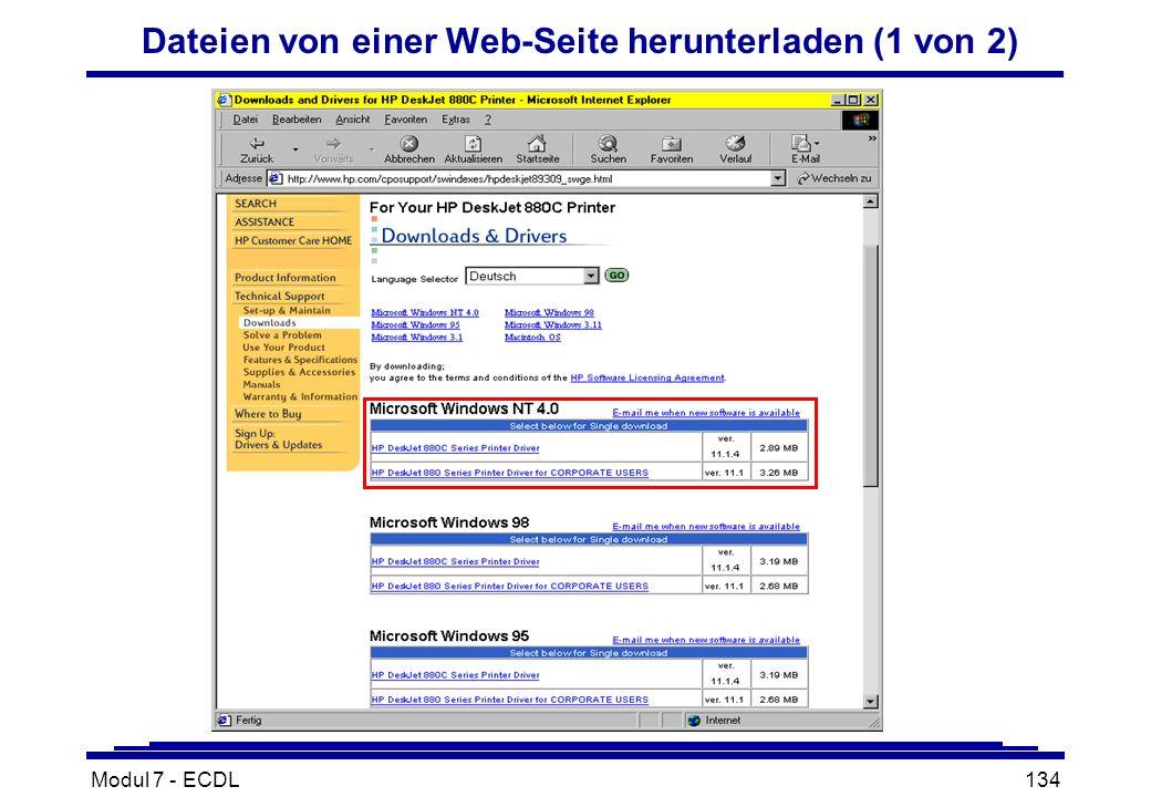 Modul 7 - ECDL134 Dateien von einer Web-Seite herunterladen (1 von 2)