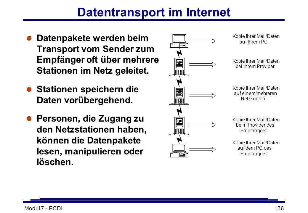 Modul 7 - ECDL136 Datentransport im Internet l Datenpakete werden beim Transport vom Sender zum Empfänger oft über mehrere Stationen im Netz geleitet.