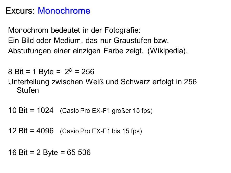 Excurs: Monochrome Monochrom bedeutet in der Fotografie: Ein Bild oder Medium, das nur Graustufen bzw. Abstufungen einer einzigen Farbe zeigt. (Wikipe