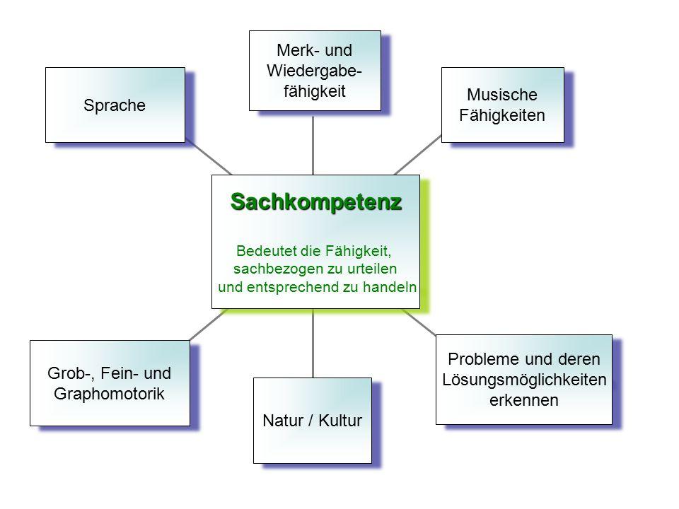 Sprache Grob-, Fein- und Graphomotorik Grob-, Fein- und Graphomotorik Natur / Kultur Probleme und deren Lösungsmöglichkeiten erkennen Probleme und der