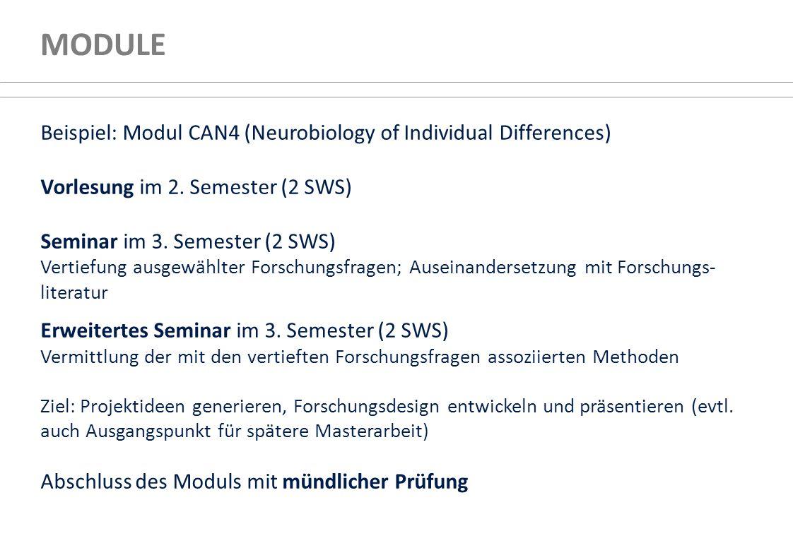 MODULE Beispiel: Modul CAN4 (Neurobiology of Individual Differences) Vorlesung im 2. Semester (2 SWS) Seminar im 3. Semester (2 SWS) Vertiefung ausgew