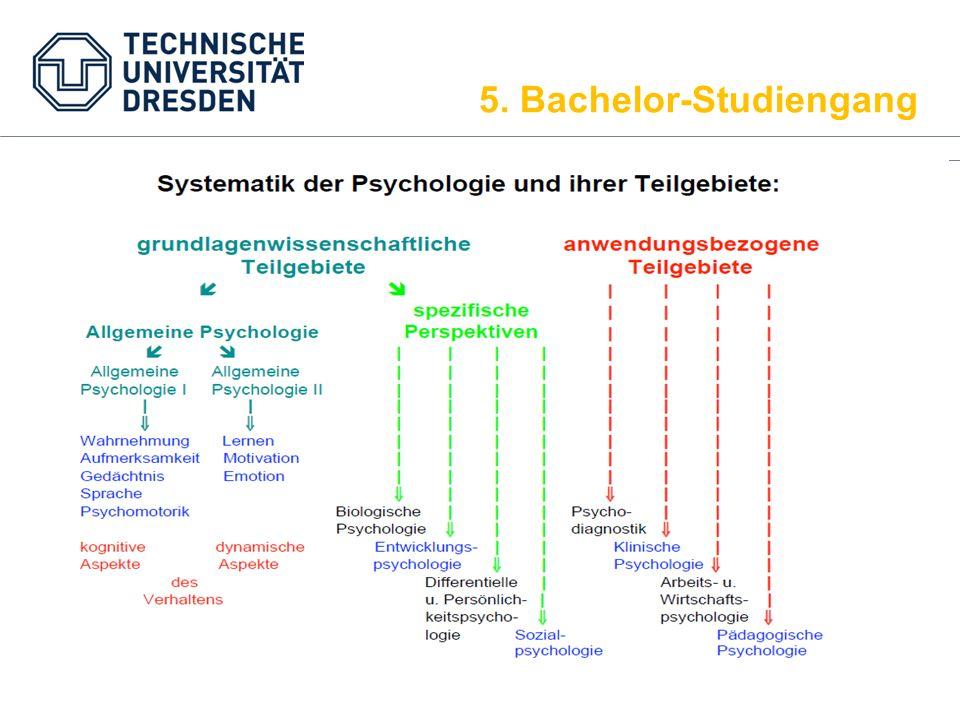 ModulbezeichnungKreditpunkteSWS Einführung/Methoden4.52+1 Statistik4.52+1 Allgemeine Psychologie I62+2 Biopsychologie32+0 Entwicklungspsychologie32+0