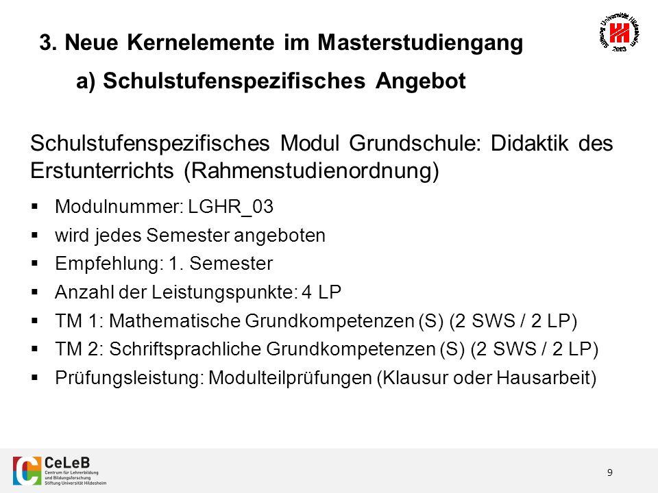 20 3.Neue Kernelemente im Masterstudiengang d) Projektband I.