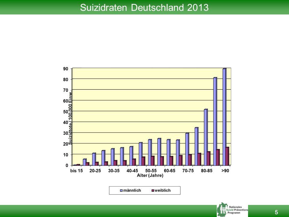 5 Suizidraten Deutschland 2013